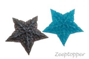 zeep ster (Z-0121)