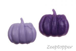 zeep pompoen (Z-0779)