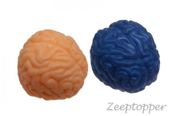 zeep hersenen (Z-1366)