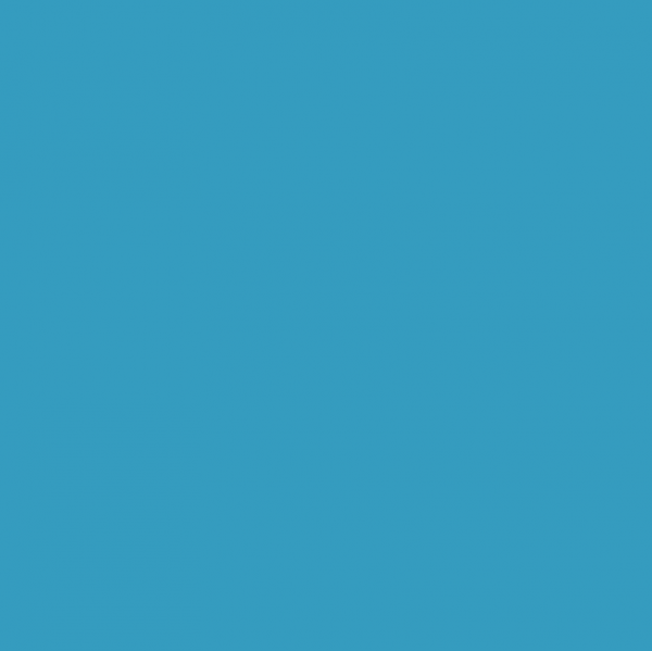 DVP Blauwviolet parelmoer