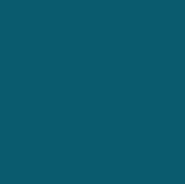 TP Turquoise parelmoer